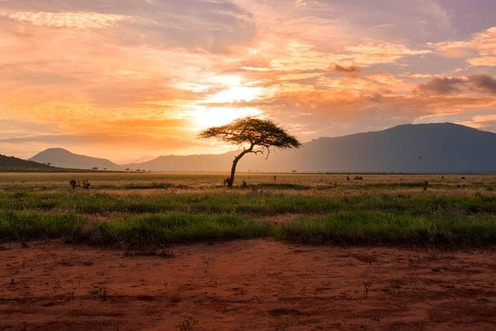 The Beauty Of The Enchanted Land - Africa